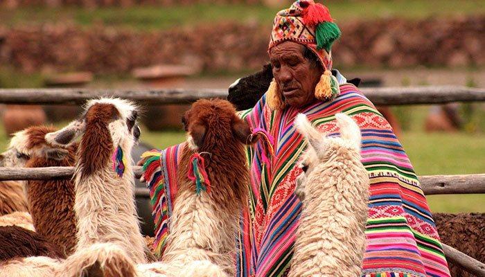 Discover Your Neighbor, Peru